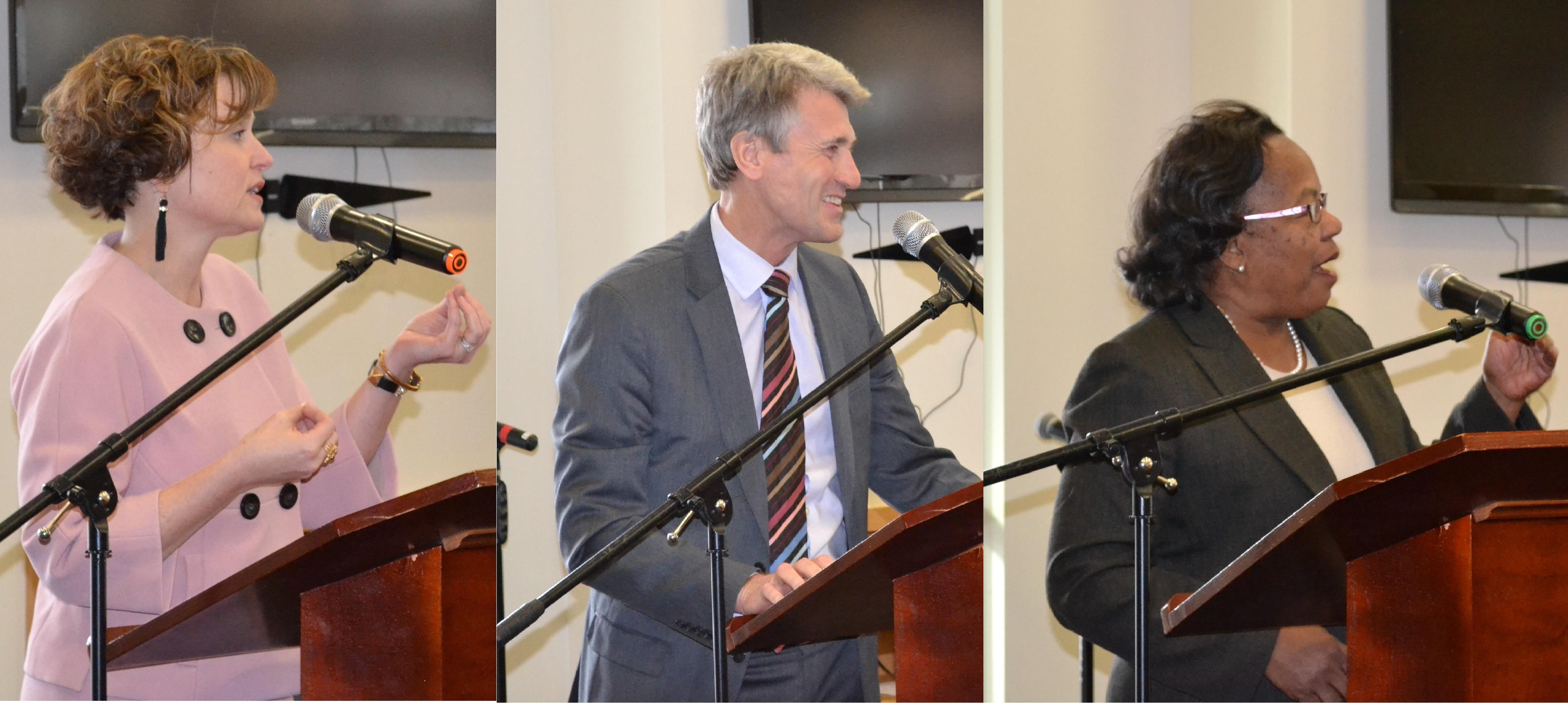Mayors Hodges, Rybak, and Sayles-Belton